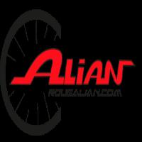 ALIAN des roues carbone artisanales d 'excellence.
